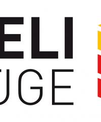 Nägeli Umzüge AG – der Helfer aus Zürich