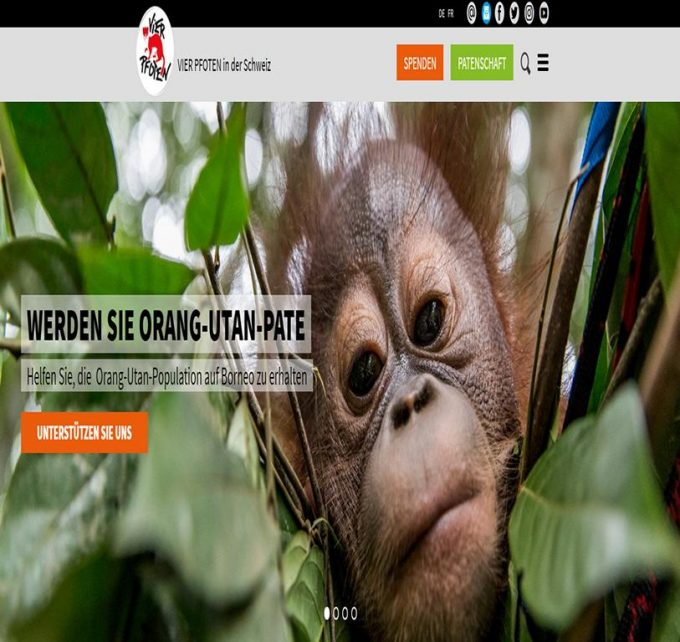 Tierschutz Schweiz